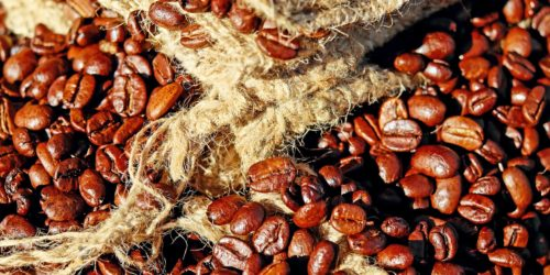 10 Best Tasting Highest Rated Coffee Beans in The World